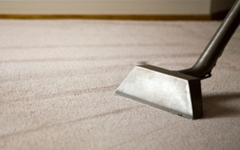 Carpet Dry Cleaning In Brisbane Jims Cleaning Group