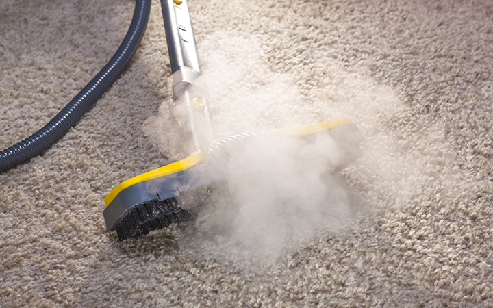 CarpetCleaning SteamCleaningSmall